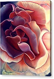 Rose Acrylic Print by Anni Adkins