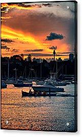 Rose Bay Marina Acrylic Print by Andrei SKY