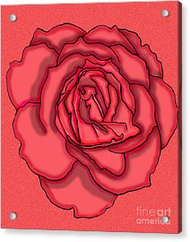 Rose Drawing Acrylic Print