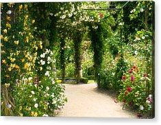 Rose Garden At Alnwick Acrylic Print