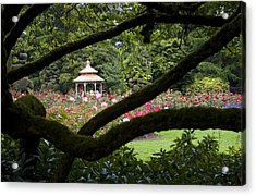 Acrylic Print featuring the photograph Rose Garden Window by Sonya Lang
