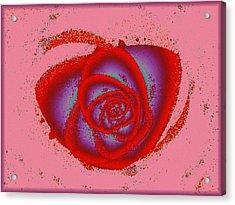 Rose Heart Acrylic Print by Anastasiya Malakhova