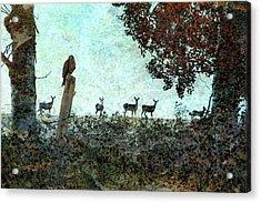 Rose Hill - Autumn Acrylic Print