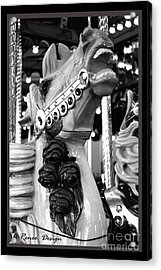 Rose Horse In Black And White Acrylic Print