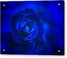 Rose In Blue Acrylic Print by Sandy Keeton