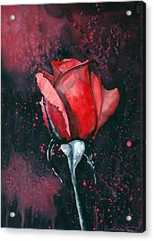 Rose In Flames Acrylic Print