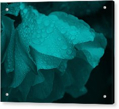 Rose In Turquoise Acrylic Print