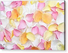 Rose Petals Background Acrylic Print by Elena Elisseeva