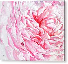 Acrylic Print featuring the painting Rose Reflection 4 by Sandra Phryce-Jones