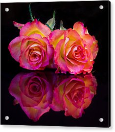 Rose Reflections Acrylic Print