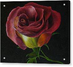 Rose Acrylic Print by Sherry Robinson