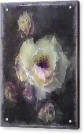 Rose Spray Acrylic Print by Jill Balsam