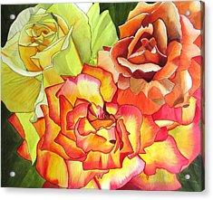 Rose Trio Acrylic Print by Sacha Grossel