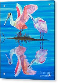 Roseate Spoonbill Pair Acrylic Print by Jane Axman