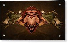 Acrylic Print featuring the photograph Rosebird by WB Johnston