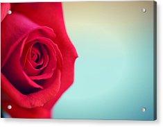 Roseblue Acrylic Print