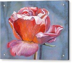 Rosefloria Acrylic Print