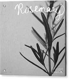 Rosemary Acrylic Print by Linda Woods