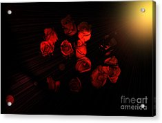 Roses And Black Acrylic Print