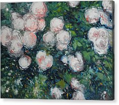 Roses At Diemersfontein Cape Town South Africa Acrylic Print by Enver Larney