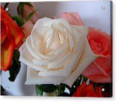 Acrylic Print featuring the photograph Roses by Deborah DeLaBarre