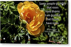 Roses Have Thorns Acrylic Print