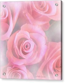 Roses Acrylic Print by Mikki Cucuzzo