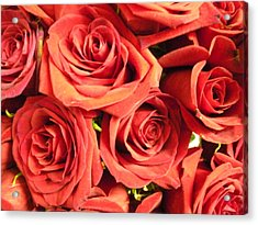 Roses On Your Wall Acrylic Print