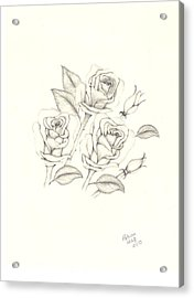 Acrylic Print featuring the drawing Roses by Patricia Hiltz