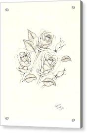 Roses Acrylic Print by Patricia Hiltz