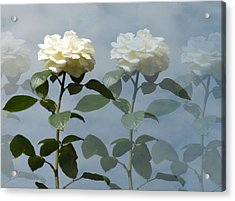 Roses Roses And More Roses Acrylic Print by Rosalie Scanlon