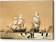 Ross Arctic Search Expedition, 1848-9 Acrylic Print by Science Photo Library
