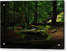 Ross Creek Montana Acrylic Print by Jeff Swan