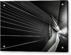 Rotterdam - Cable Style Acrylic Print by Michael Jurek
