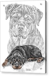 Rottie Charm - Rottweiler Dog Print With Color Acrylic Print