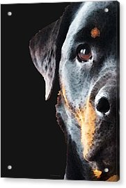Rottie Love - Rottweiler Art By Sharon Cummings Acrylic Print by Sharon Cummings
