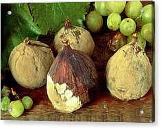 Rotting & Mouldy Figs Acrylic Print by Sidney Moulds/science Photo Library