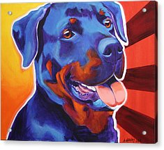 Rottweiler - Baloo Acrylic Print by Alicia VanNoy Call