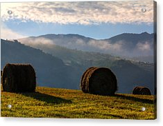 Round Bales And Foggy Hills Acrylic Print