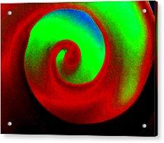Round N Round Acrylic Print by Rebecca Flaig