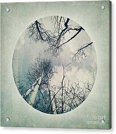 round treetops II Acrylic Print