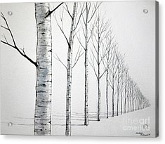 Row Of Birch Trees In The Snow Acrylic Print