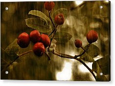 Acrylic Print featuring the mixed media  Berry Nice by Fine Art By Andrew David