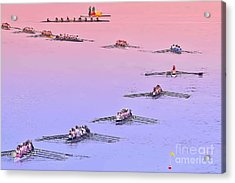Rowers Arc Acrylic Print by Gary Holmes
