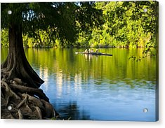 Rowing Past Red Bud Island Acrylic Print by Mark Weaver