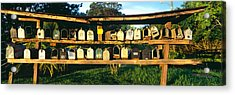 Rows Of Mailboxes Along Road To Hana Acrylic Print by Panoramic Images