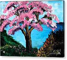 Royal Pink Poinciana Tree Acrylic Print by Ecinja Art Works