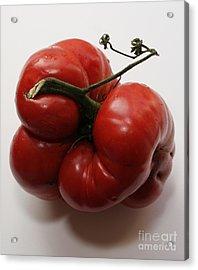 Roys Tomato Acrylic Print