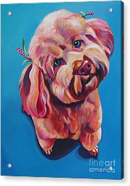 Rozzie In Pink Acrylic Print