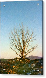 Rubber Tree Acrylic Print by Spyder Webb